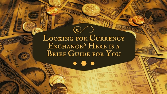 Looking for Currency Exchange? Here is a Brief Guide for You